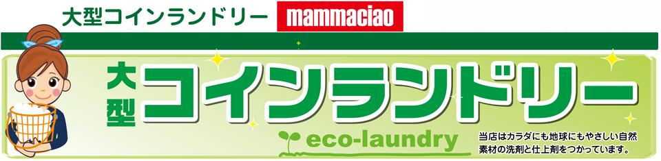 山梨大型コインランドリーマンマチャオ